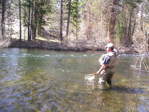Flyfishing the sierra blog for Sierra fly fishing