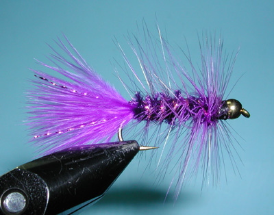Purple Woolly Bugger