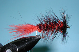 Brown Woolly Bugger