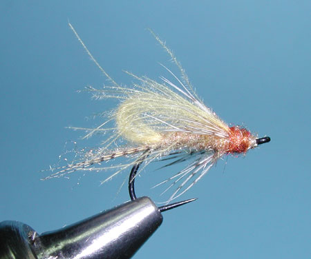 CDC Bubbleback Caddis, Tan