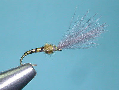 Blue Wing Olive Colored Emerger