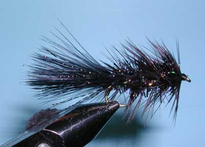 Crystal Bugger, Black
