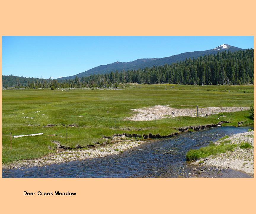 Deer creek sierra tahoe for Deer creek fishing