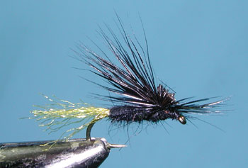 Black E/C Caddis