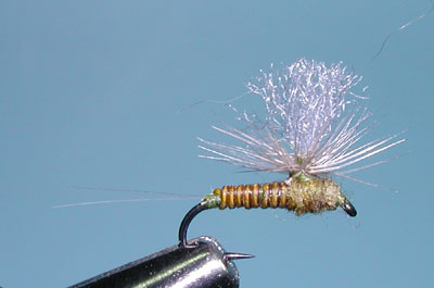 Owens River Fly Swap 2009