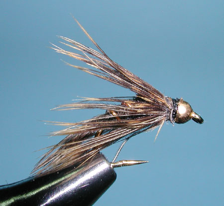 Wet Pheasant Tail