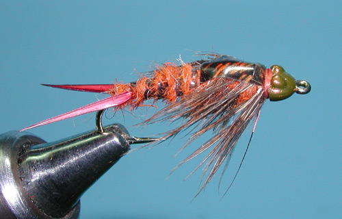 Niemy's Stonefly Nymph