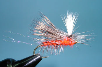 October Caddis Paralyzer