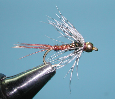 Soft Hackle Pheasant Tail