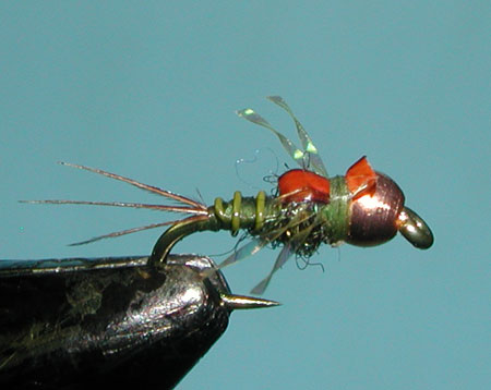 Hogan's S&M Nymph