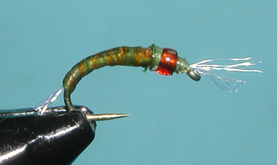 Ginger/Olive Spanflex Emerger