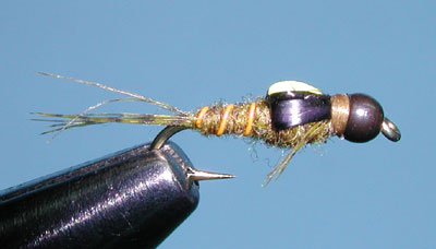 Z-Wing Caddis, Green