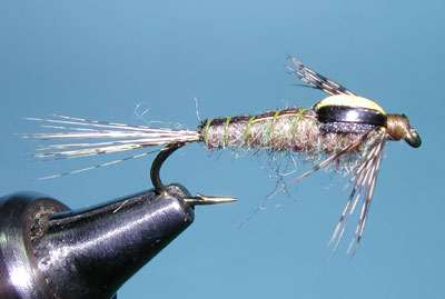 Z-Wing Caddis, Amber