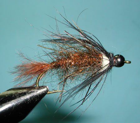 Bill's Stick Caddis