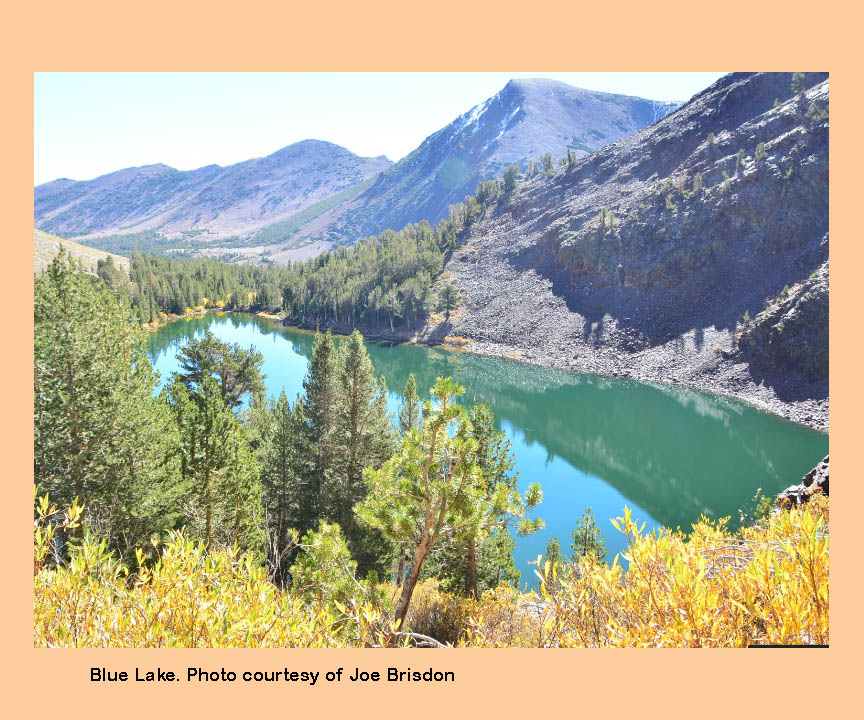Virginia lakes backcountry eastern sierras for Sierra fish in english