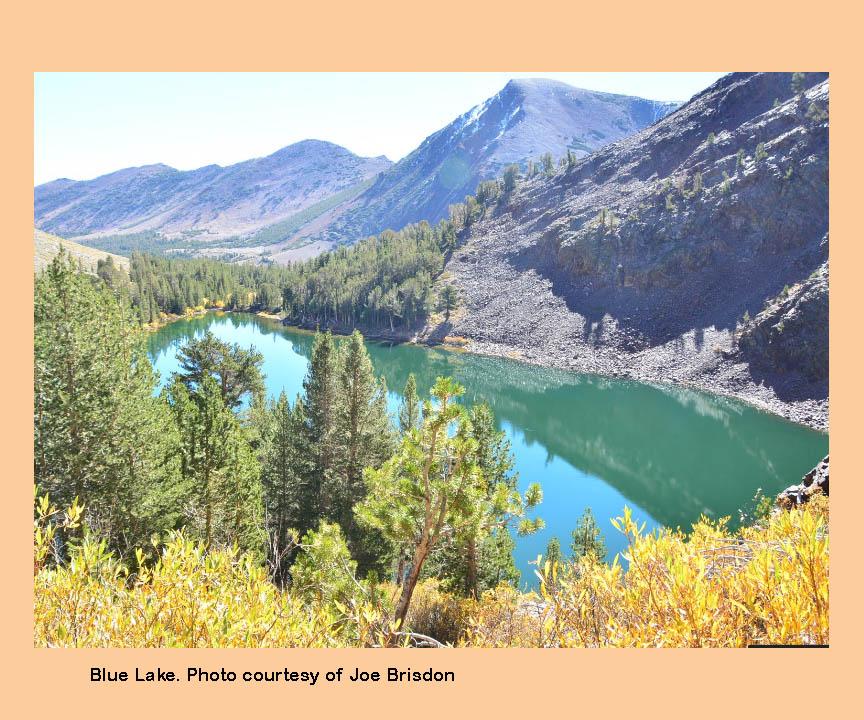 Virginia lakes backcountry eastern sierras for Sierra fish in english