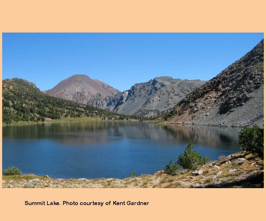 Virginia lakes backcountry eastern sierras for Virginia lakes fishing