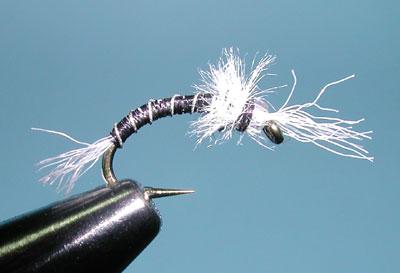 Zebra midge for Midge fly fishing